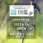 l_miya_161230zukandotjp01.jpg