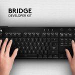 l_yu_bridge1.jpg